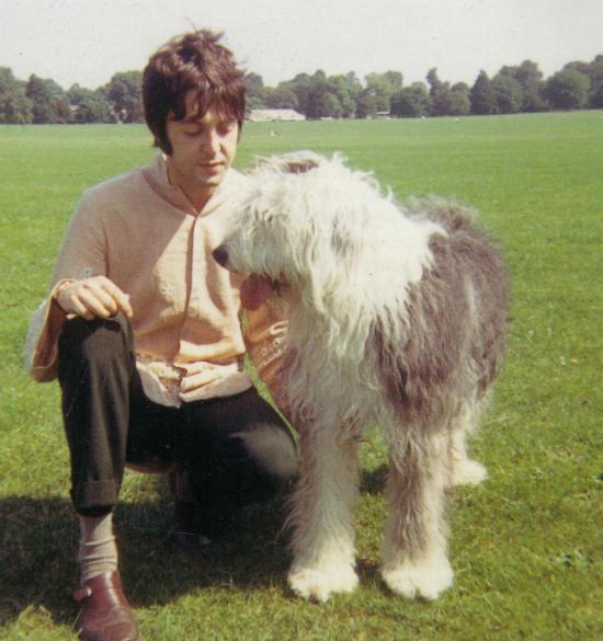 Frases de Paul McCartney que te enseñarán que ser normal es aburrido 6