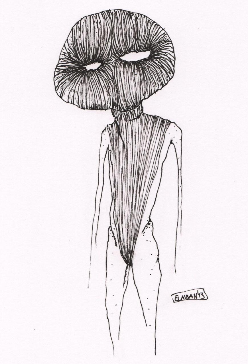 El aiban - Hairbody