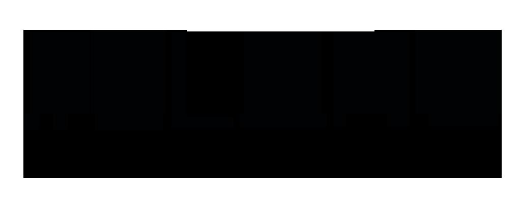 SLANG-LOGO-BIG black- alpha