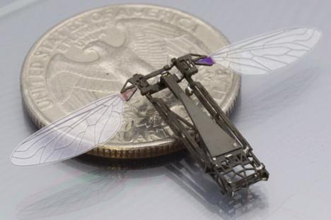 dezeen_Tiny-robotic-insect-takes-flight_4