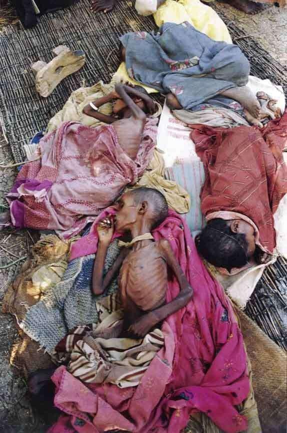situación de somalíes