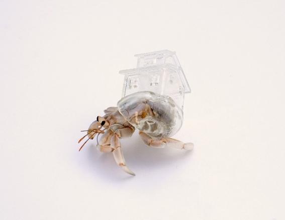 Aki Inomata: cangrejos con detalles arquitectónicos - Diseño