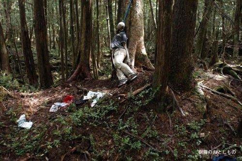 aokigahara-el-bosque-suicidas-japoneses