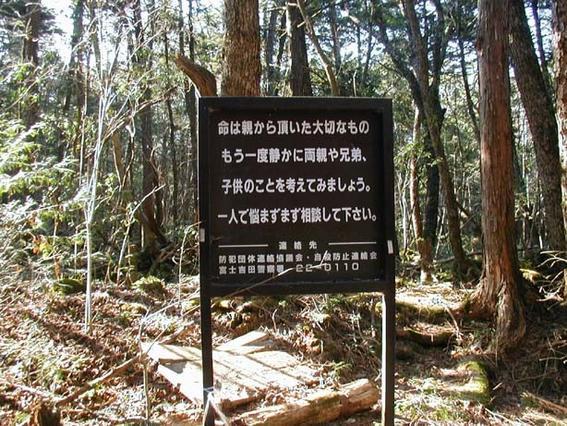 bosque_suicidas_japon