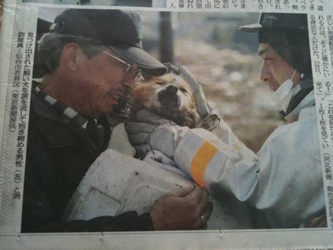 tsunami de japon 2011