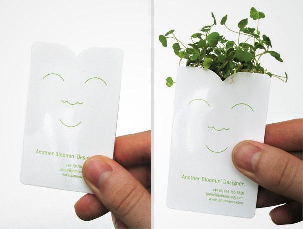empresa de semillas 2