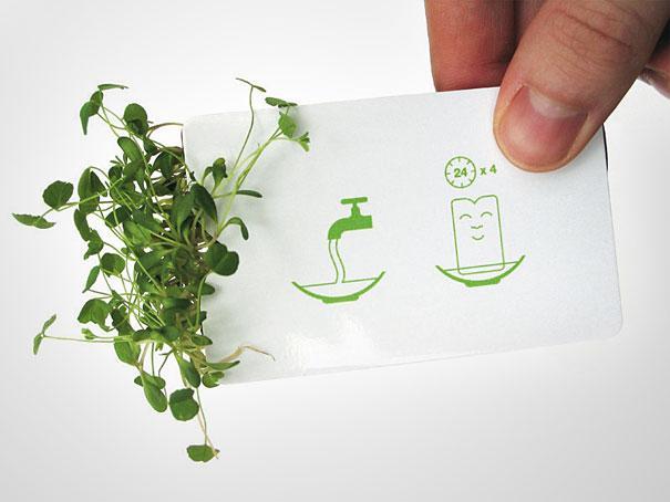 empresa de semillas