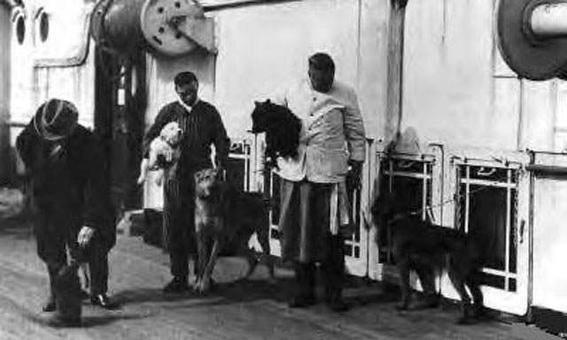 perros a bordo del Titanic