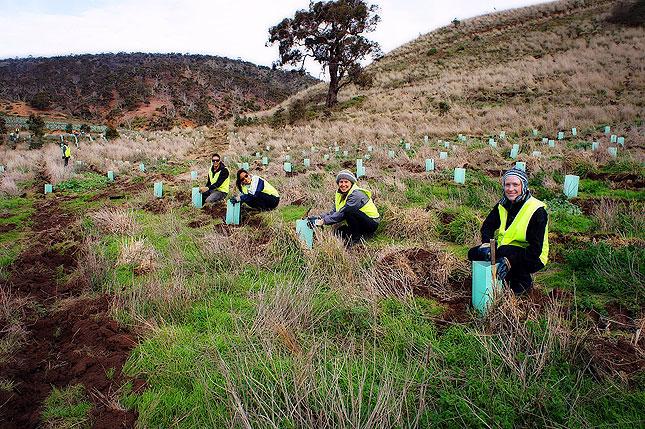Conservation Volunteers, Australia and New Zealand