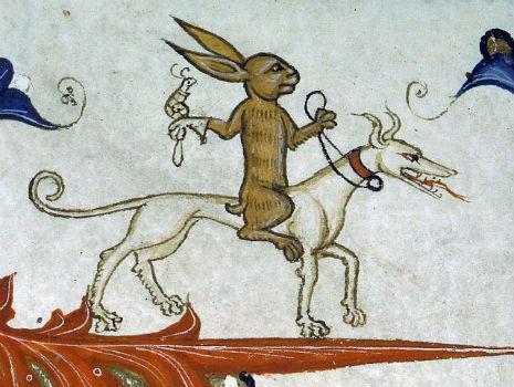 representacion del conejo 4