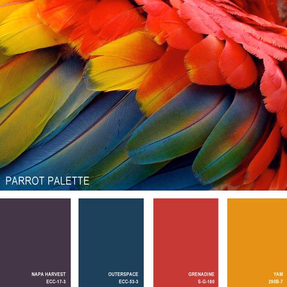 La paleta de color de la naturaleza - Diseño