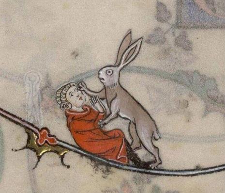 representacion del conejo 2