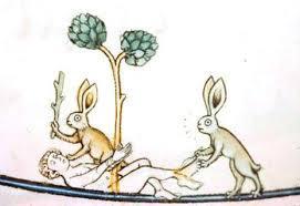 representacion del conejo 1