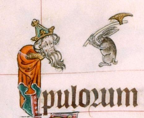 representacion del conejo 8