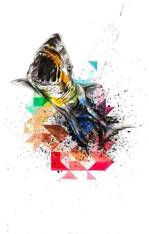 283522435802173399 - tiburon