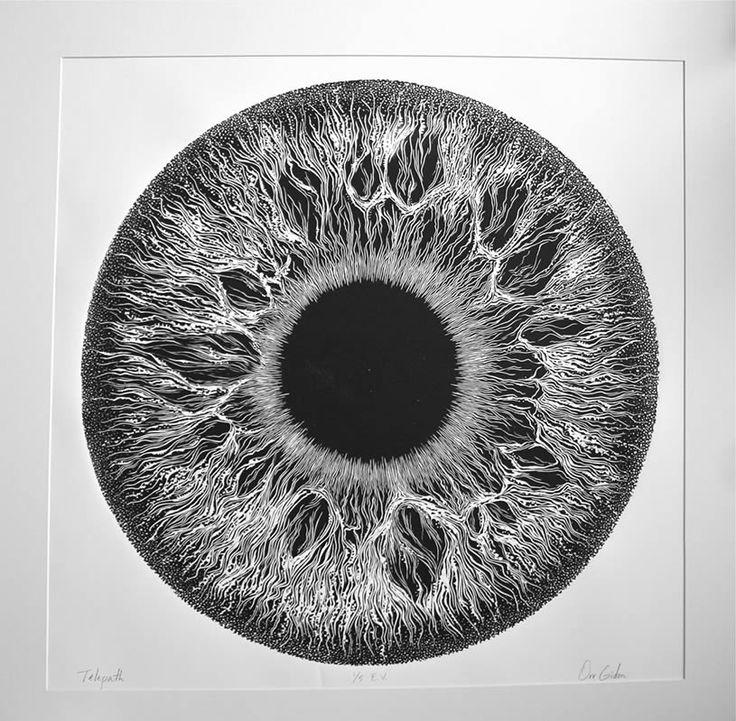 Iris-texto 2- ORR GIDON