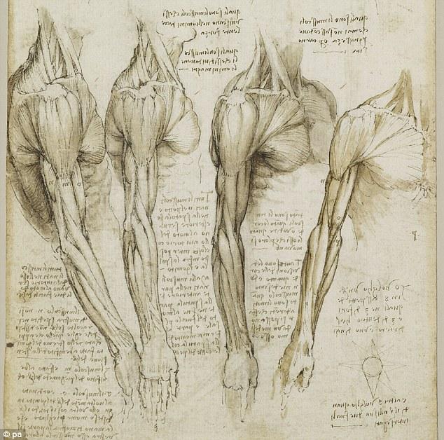 Las mejores frases de Leonardo Da Vinci - Arte