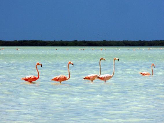 playas mas hermosas 2
