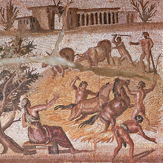 esclavos-agricultores