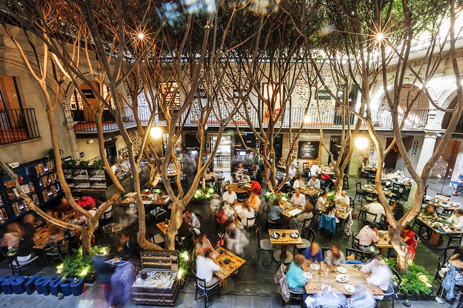 10 restaurantes en el d f que debes conocer comida for Cafe el jardin centro historico