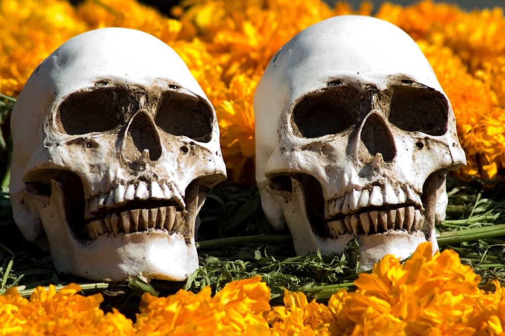 Fotos Del Cangri Muerto: Por Qué El Día De Muertos Es Mejor Que Halloween