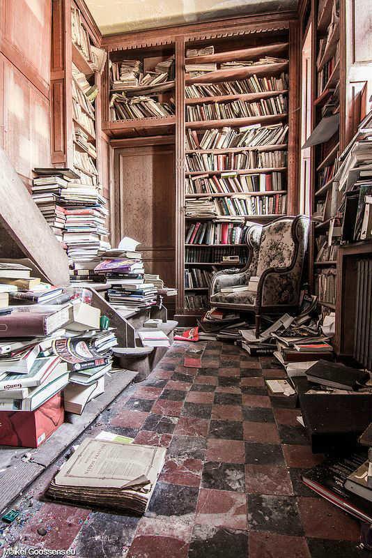 biblioteca-belgica