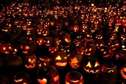 datos halloween 6