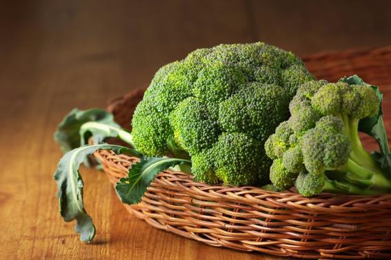 cultivo-de-brócoli
