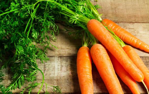 zanahorias-para-curar-el-cancer