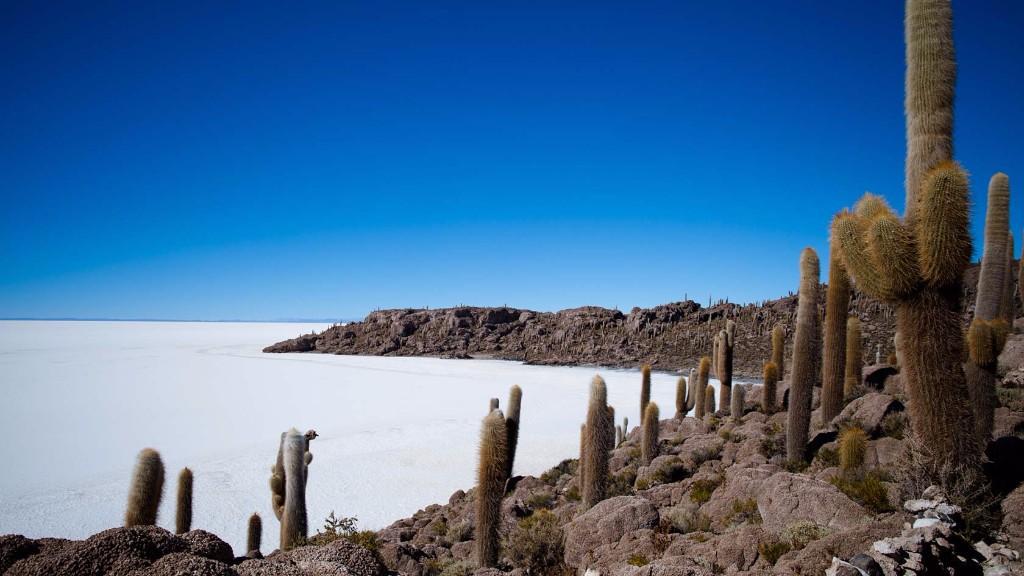 Isla en el Salar de Uyuni, Bolivia