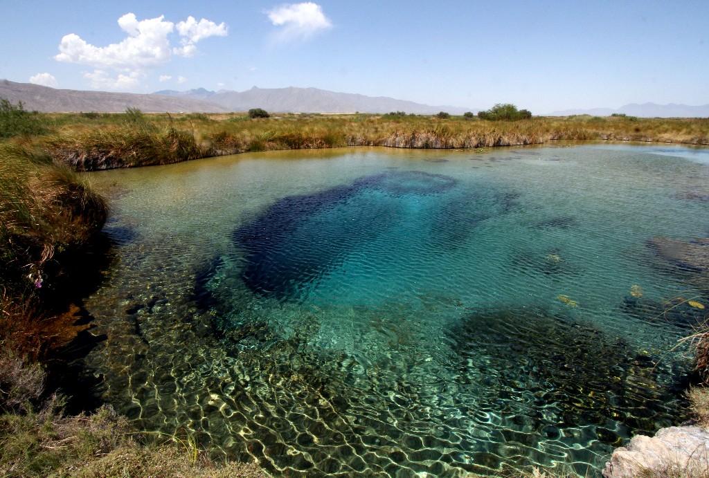 Laguna De Cuatro Sienegas, México