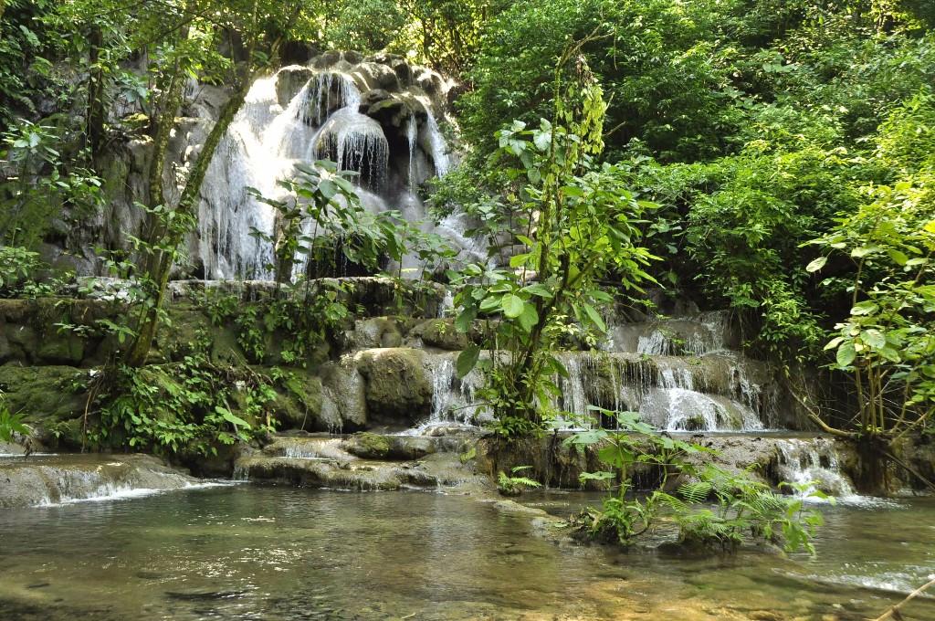 Palenque hippie