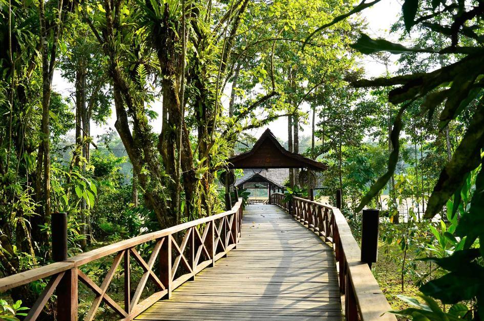 Sukau Rainforest Lodge