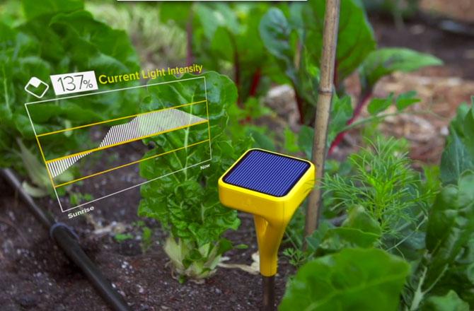 disenos inteligentes jardin