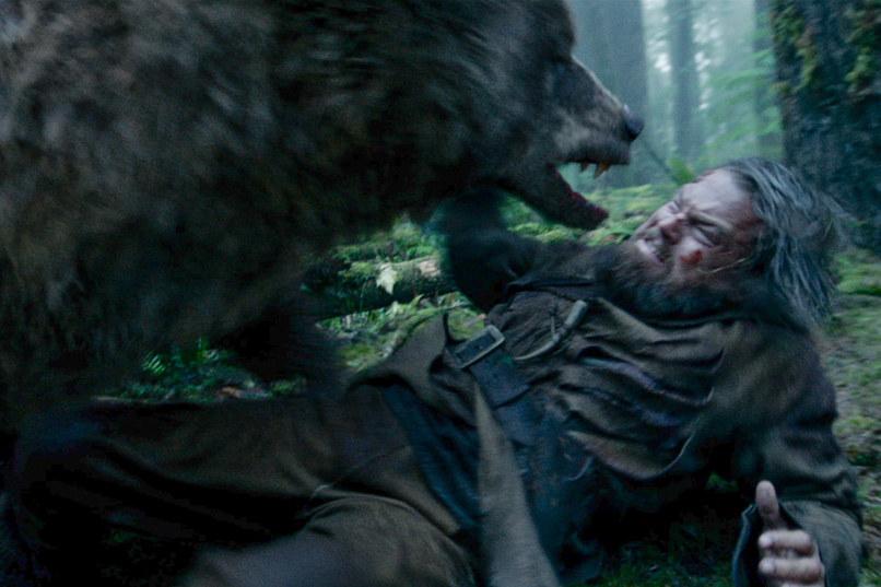ataque del oso