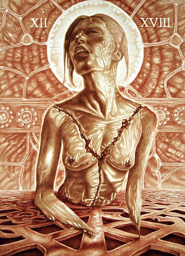 viviseccion condicion humana