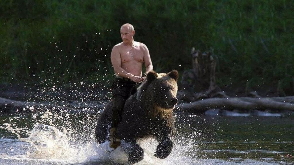 Vladimir Putin-oso