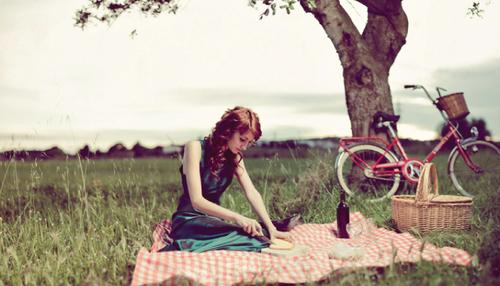 dia de campo picnic