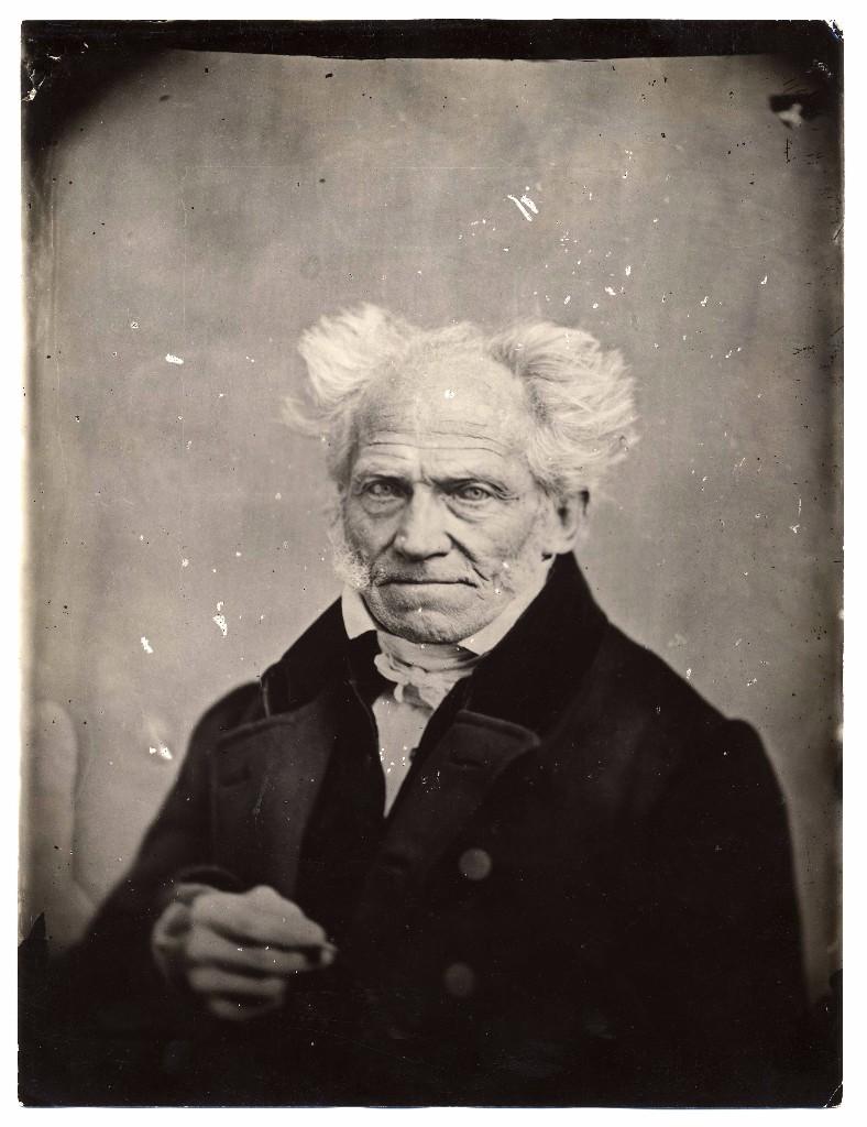 arthur schopenhauer - discusión