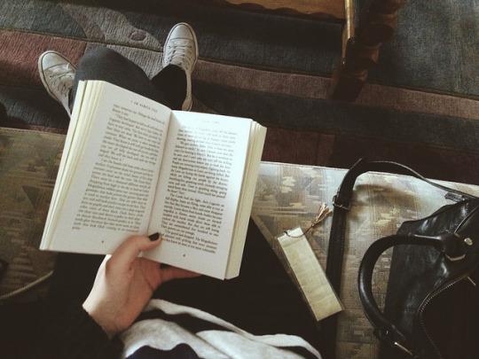 amantes de los libros