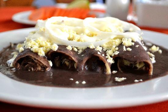 enfrijoladas - platillos mexicanos