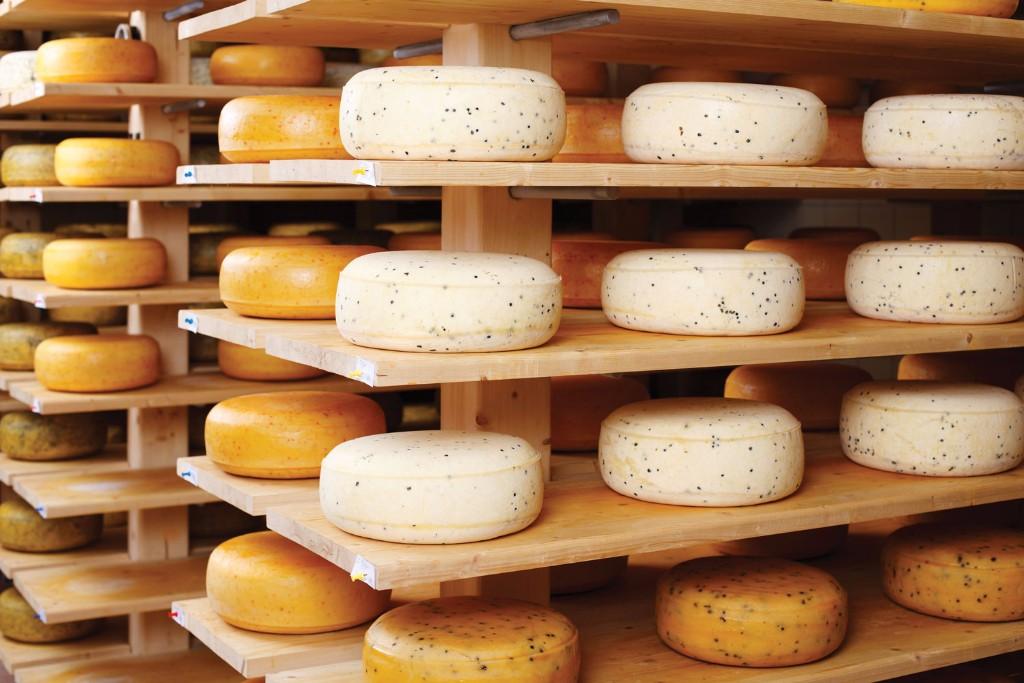 Consejos para comer queso como un experto