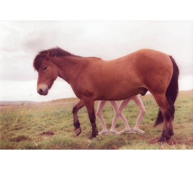 Ariko inaoka caballo