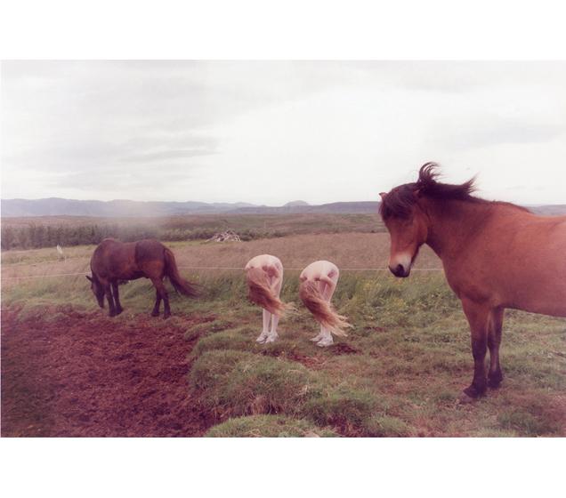 Ariko inaoka caballos