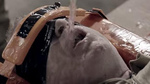 artefactos de tortura-ahogamiento