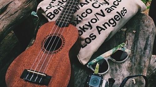 folk musica guitarra