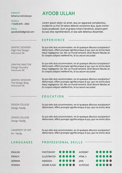 formatos para curriculum
