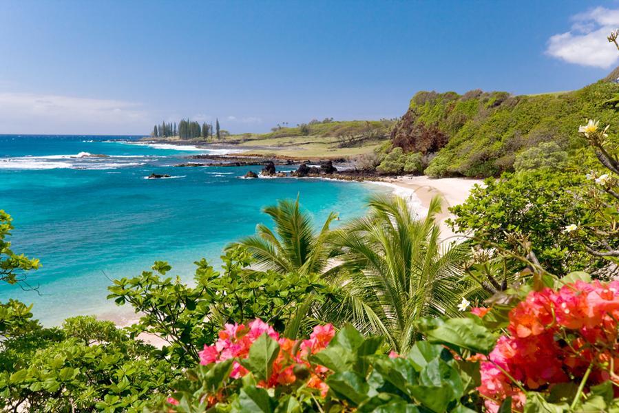 maui hawai mujeres valientes