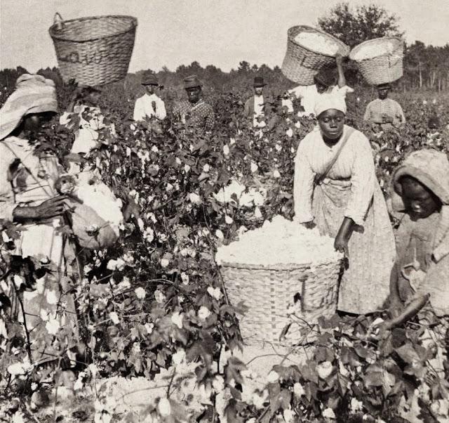 música de jazz - campos de algodón y esclavismo