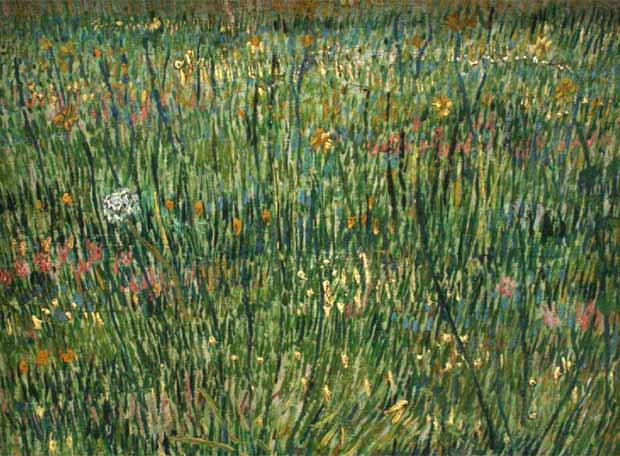 obra de arte parche de hierba van gogh